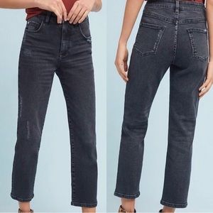 Anthropologie Pilcro Relaxed Straight Leg Jeans